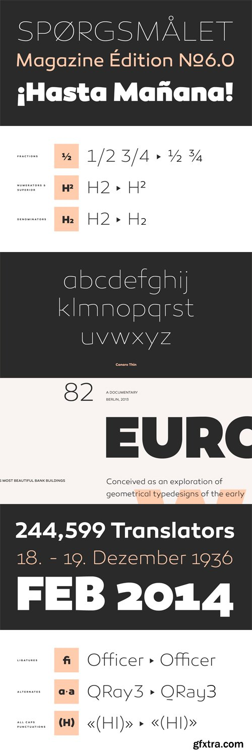 Canaro Font Family - 18 Fonts for $300!