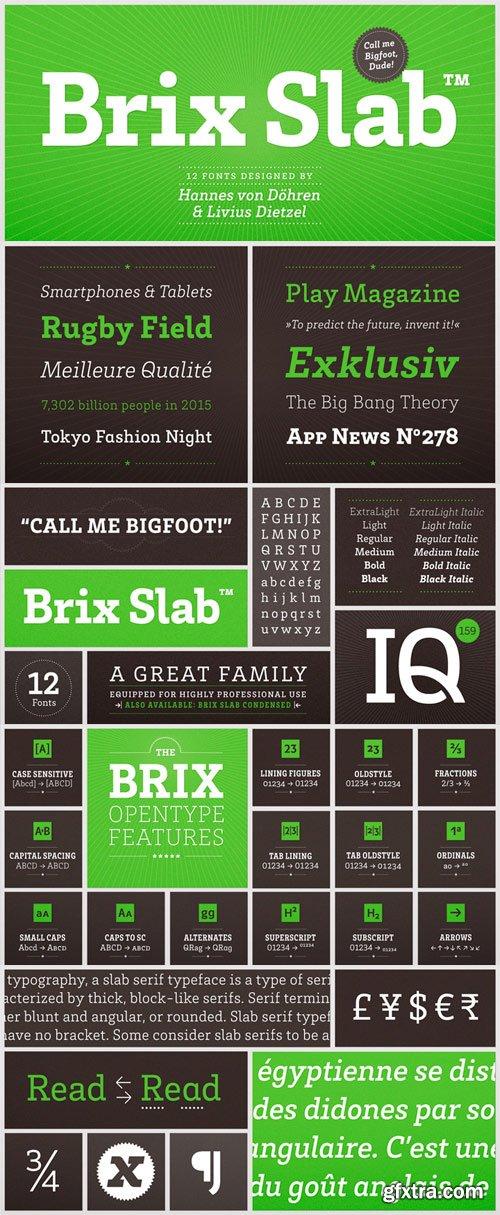 Brix Slab Font Family - 12 Fonts for $250