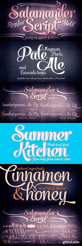 Salamander Font Family - 4 Fonts for $65