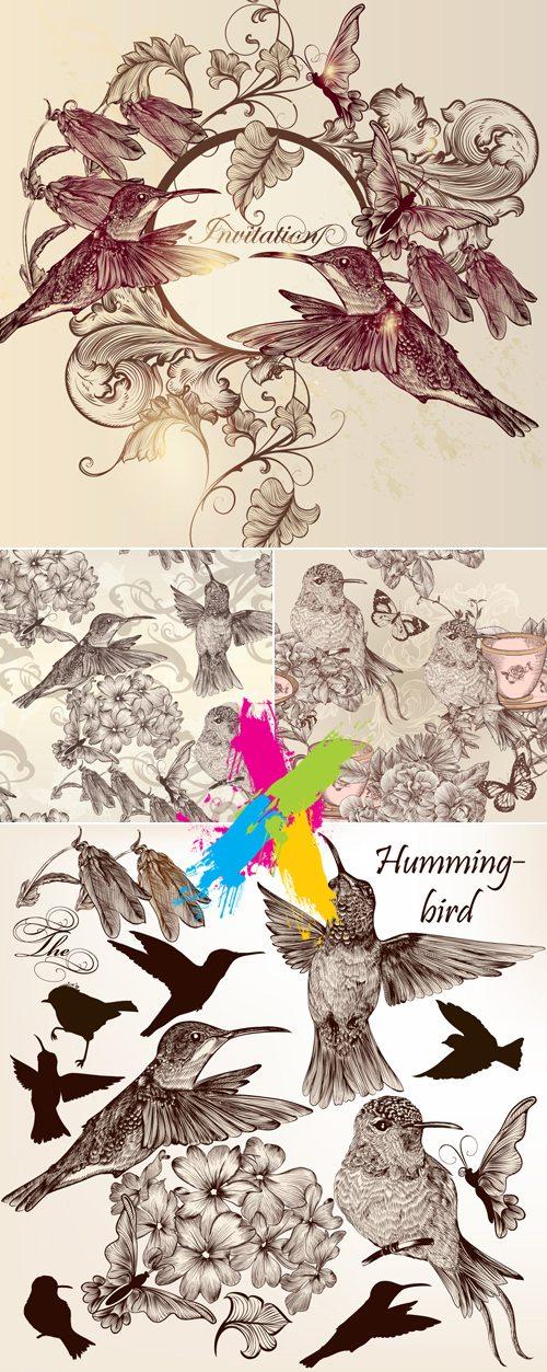 Hand Drawn Vintage Birds Backgrounds Vector