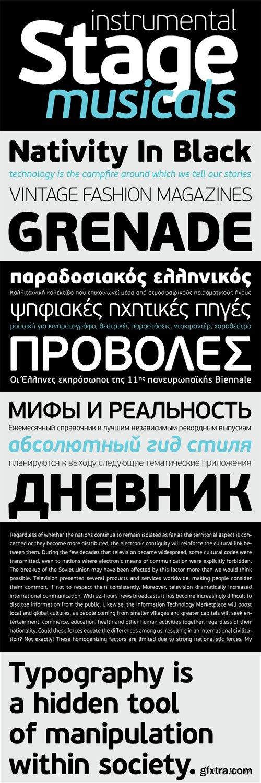 PF Beau Sans Pro Font Family - 16 Fonts for $725