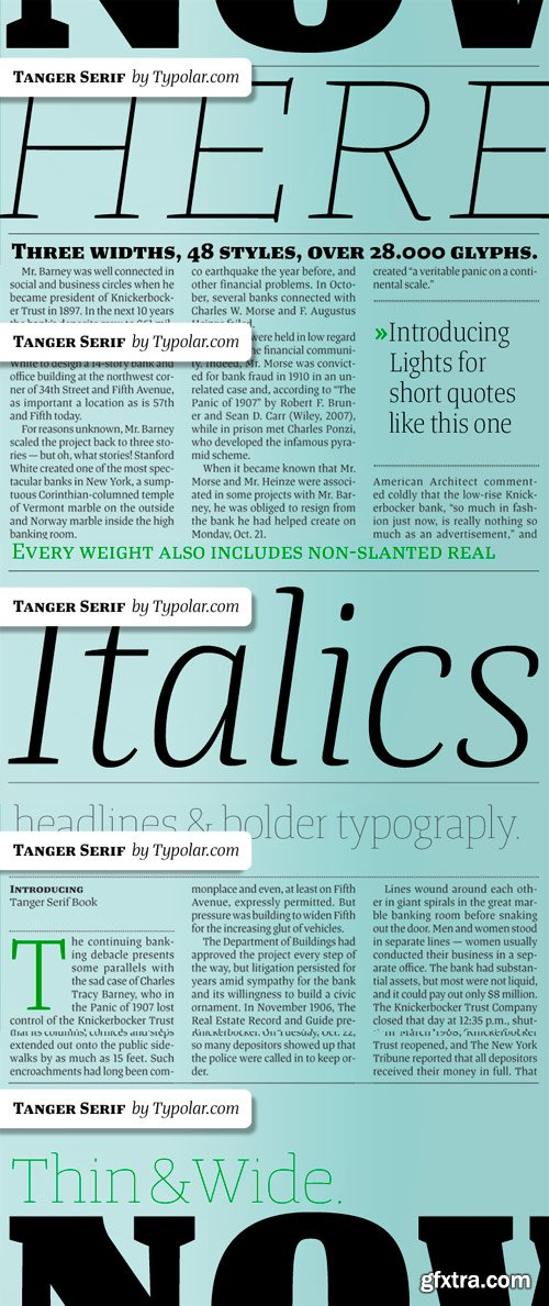 Tanger Serif Font Family - 48 Fonts for $1230
