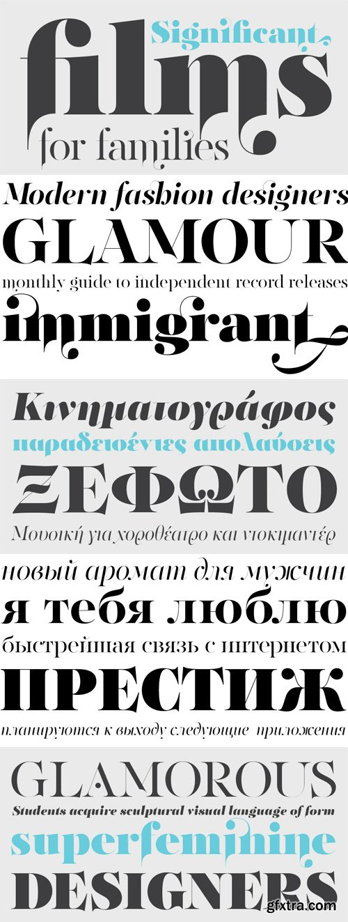 PF Regal Finesse Pro Font Family - 10 Fonts for €625