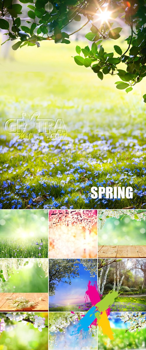 Stock Photo - Spring Nature Backgrounds