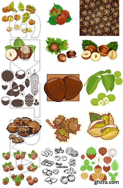 Shutterstock - Nuts Collection, 25xEps