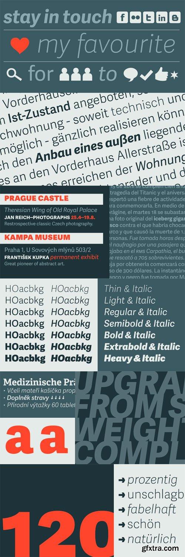 Adelle Sans Font Family - 14 Fonts for $599