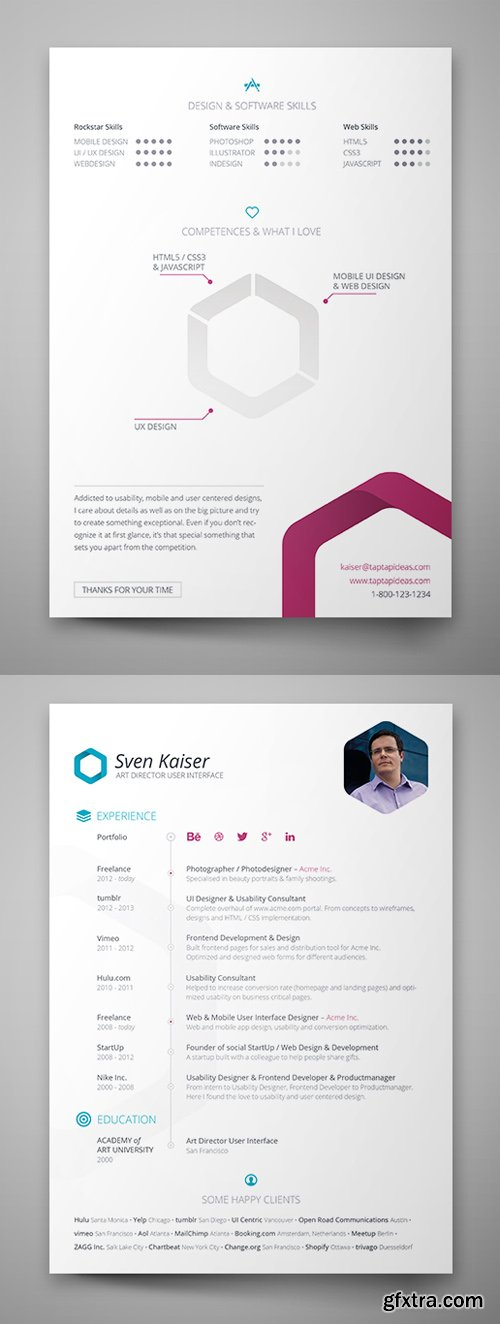 Hexagon Vita Resume Template Insesign