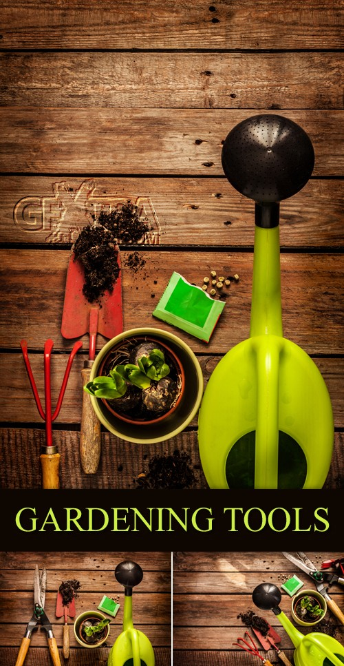 Stock Photo - Gardening Tools on Wooden Background