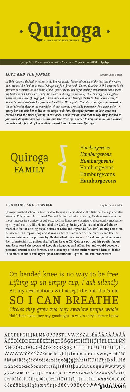 Quiroga Serif Pro Font Family - 6 Fonts for $150