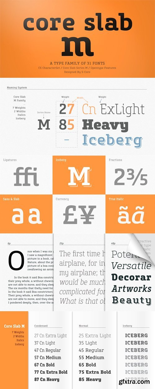 Core Slab M Font Family - 31 Fonts for $380