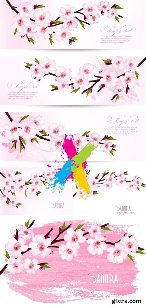 Flowering Sakura Backgrounds & Banners Vector