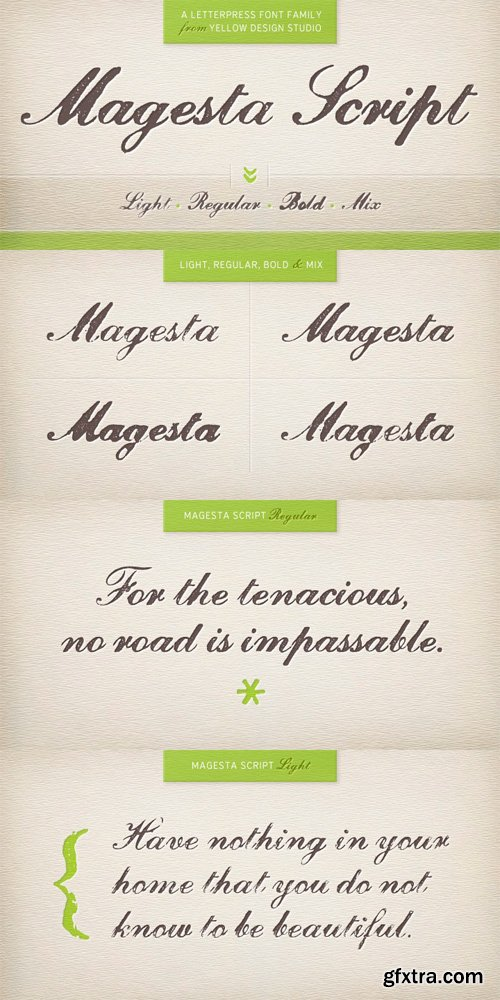 Magesta Script Font Family - 4 Fonts for $25