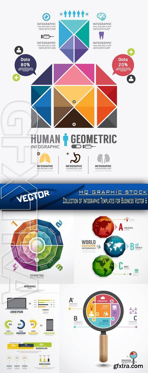 Stock Vector - Collection of Infographic Templates for Business Vector 6