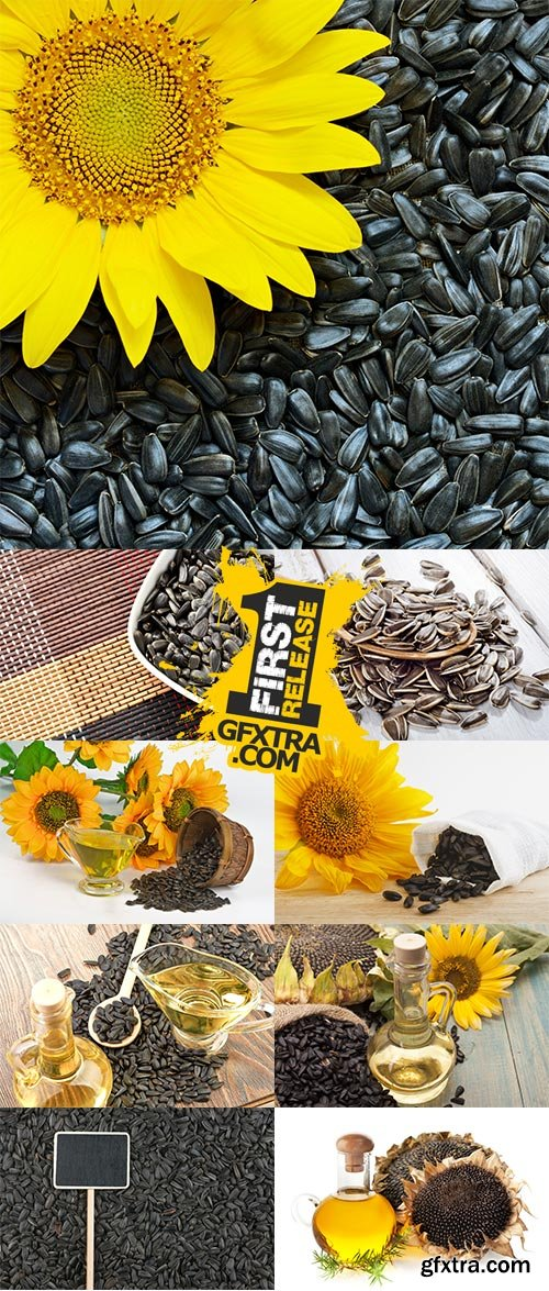 Stock Photo: Sunflower seeds and vegetable oil