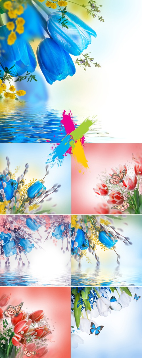 Stock Photo - Pink & Blue Tulips Cards