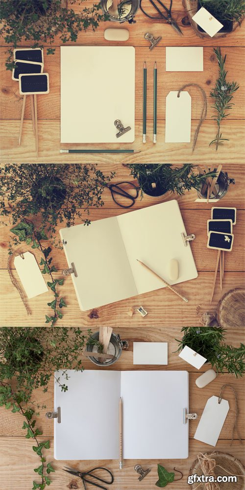 Stationery Mock ups with Nature Background