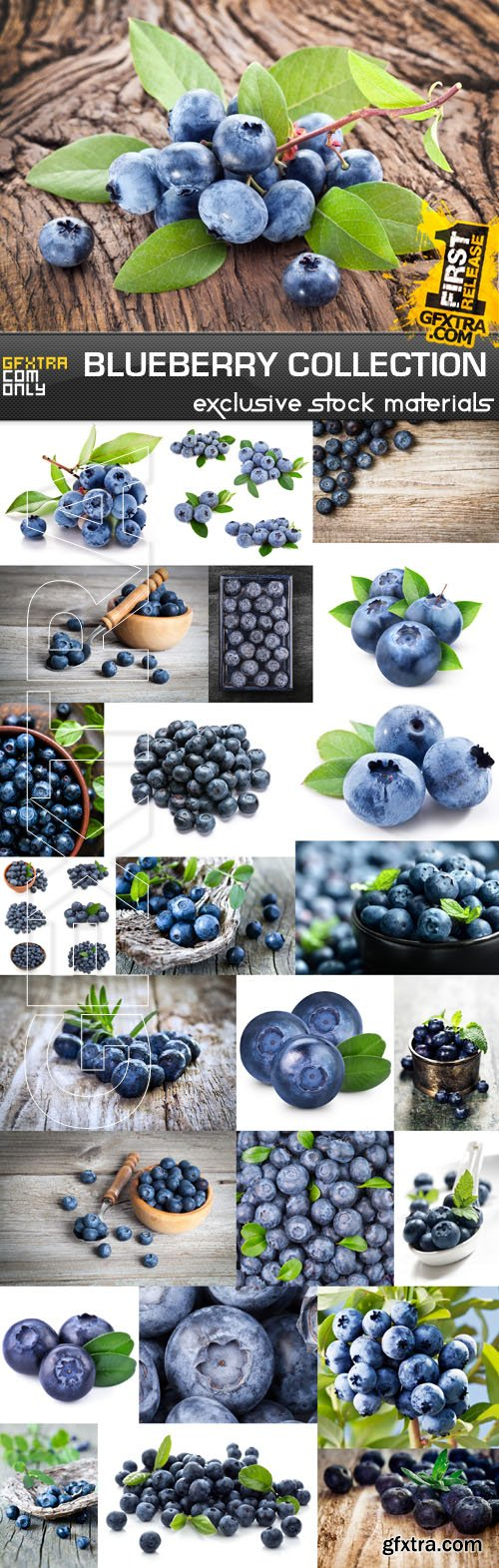 Blueberry Collection, 25xUHQ JPEG
