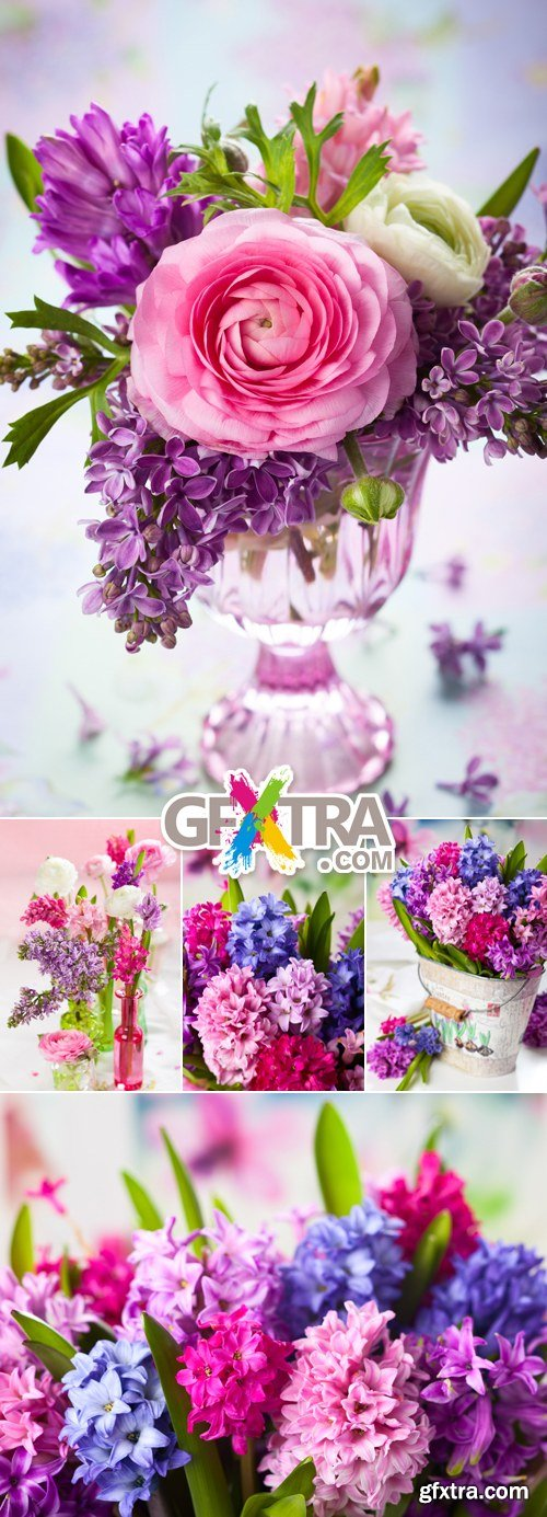 Stock Photo - Spring & Summer Color Flowers