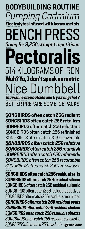Heron Sans Font Family - 20 Fonts for $560