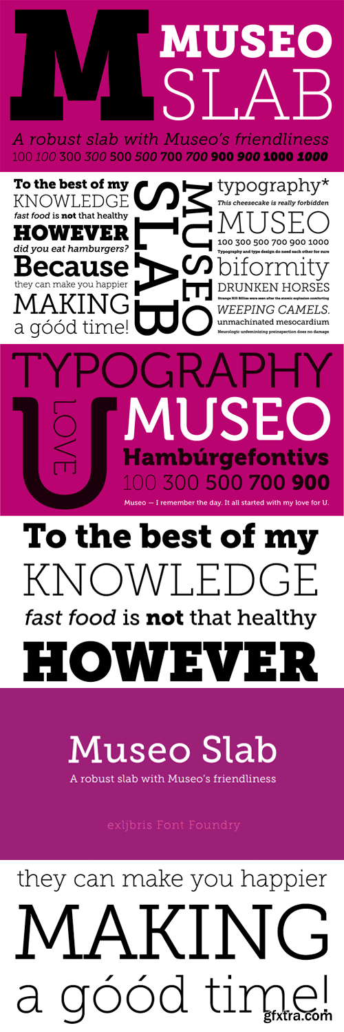 Museo Slab Font Family - 12 Fonts for $99