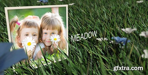 Videohive Meadow 6702113