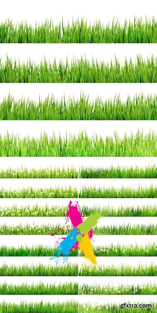 Green Grass & Flowers Borders Vector
