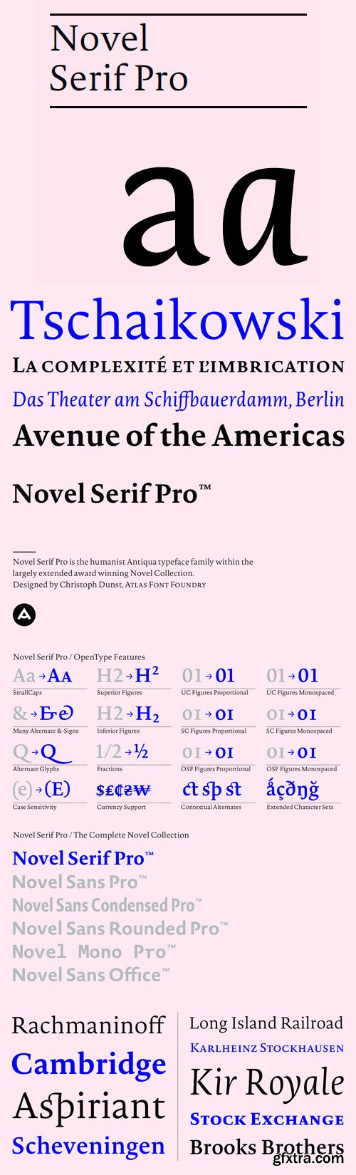 Novel Pro Font Family - 12 Fonts for $399