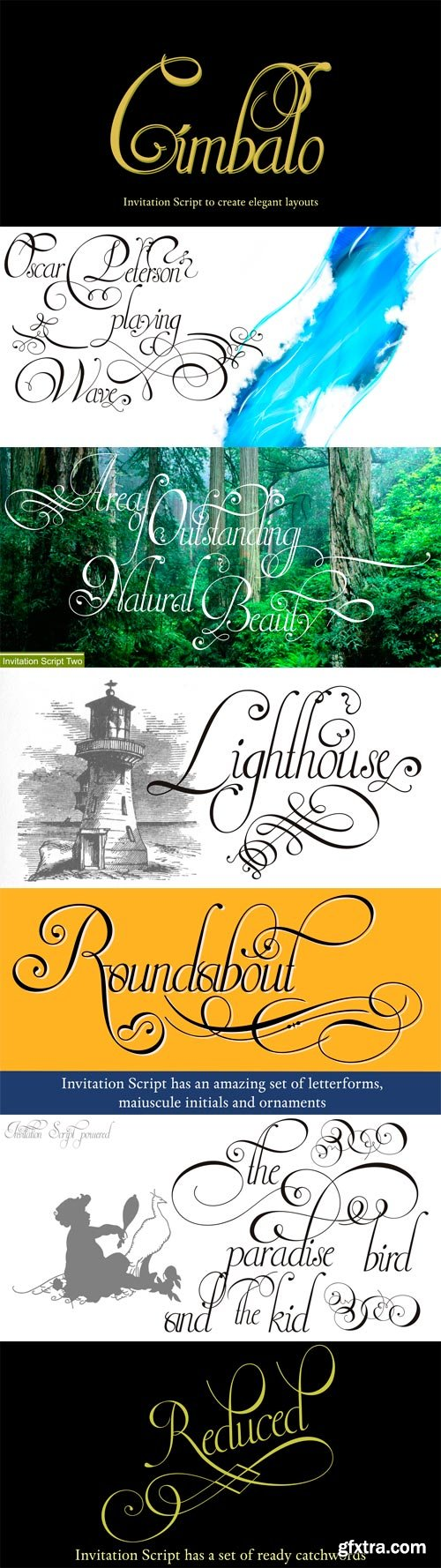 Invitation Script Font Family - 4 Fonts for $132