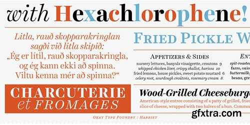 Harried Series Font Family - 20 Font $800
