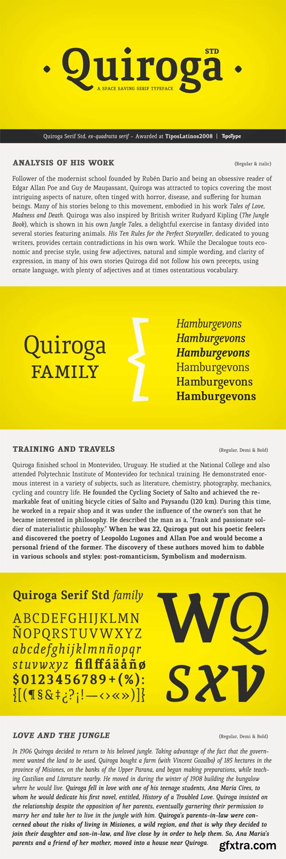 Quiroga Serif Font Family - 6 Fonts for $99