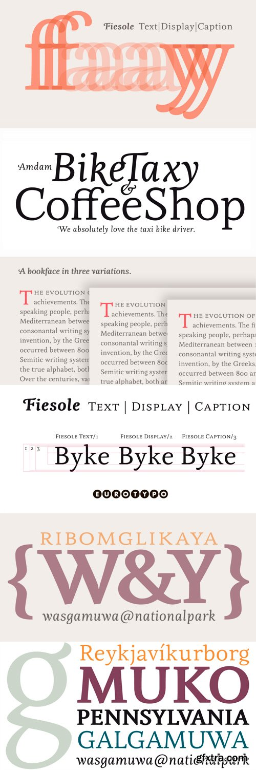 Fiesole Font Family - 17 Fonts for $259