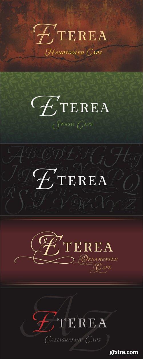 Eterea Font Family - 12 Fonts for $200