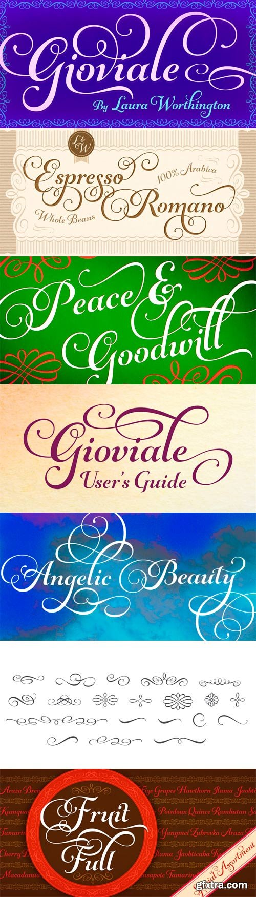 Gioviale Font Family - 2 Fonts for $70