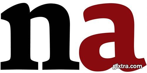 Sina Nova Font Family - 12 Font $588