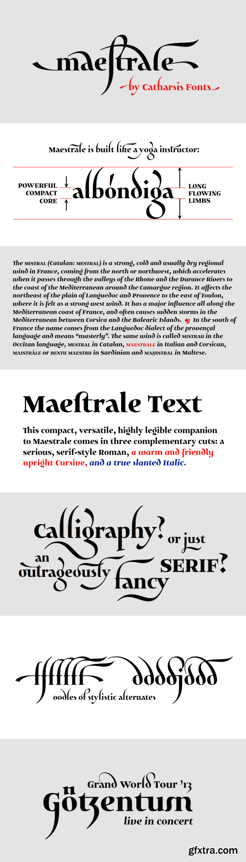 Maestrale Font Family - 5 Fonts for $60