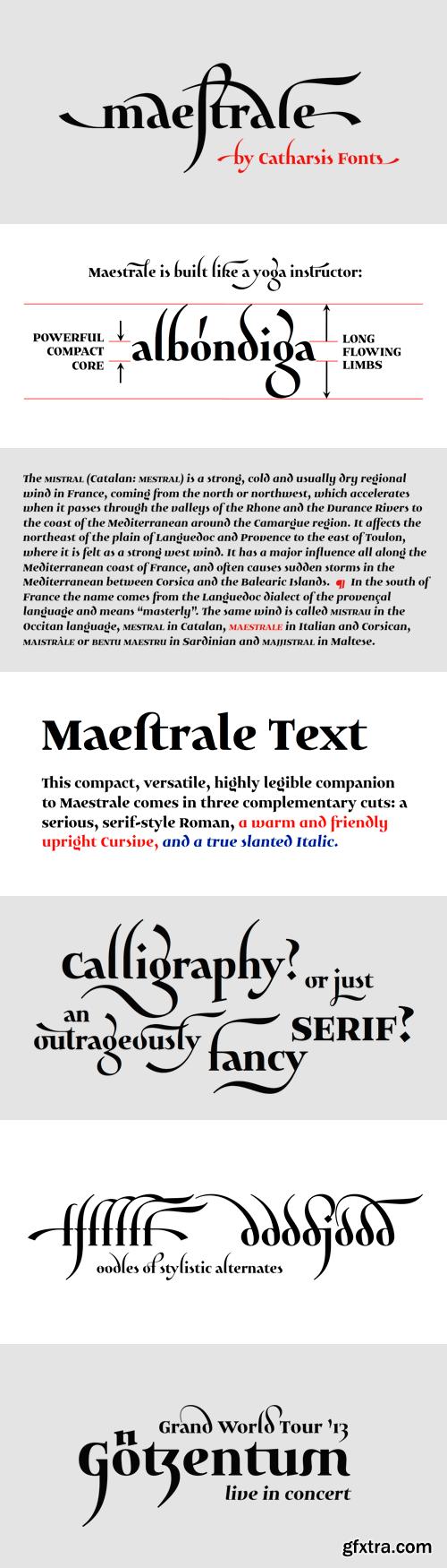 Maestrale Font Family - 5 Fonts for $60