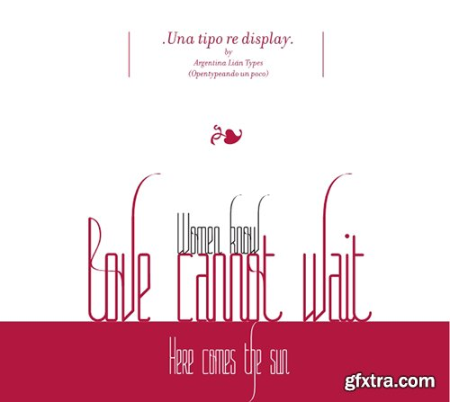 Lunga Font Family - 4 Fonts $60[