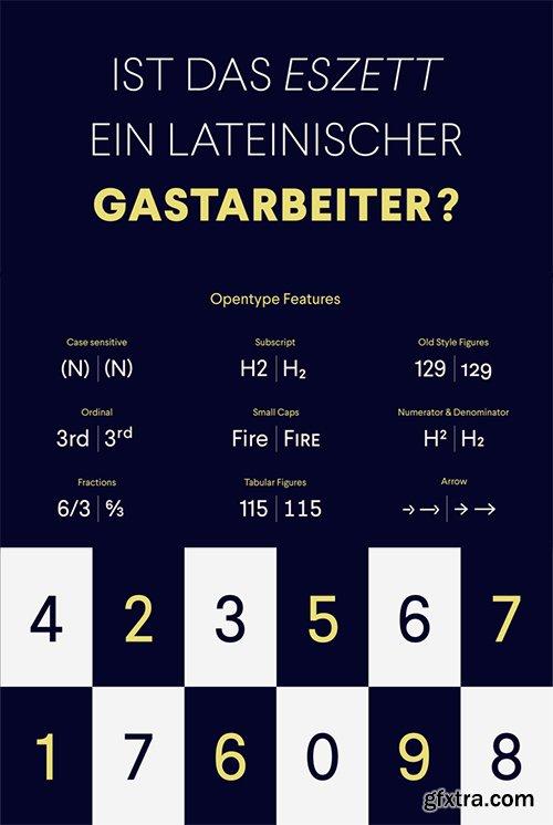 Larsseit Font Family- 12 Fonts $444