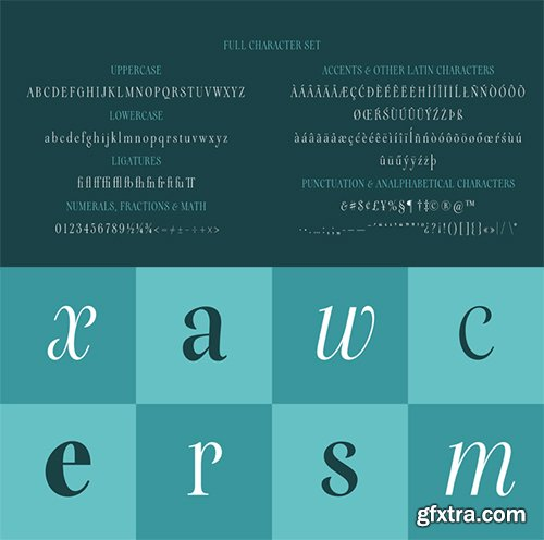Galea Display Font Family - 4 Font $200