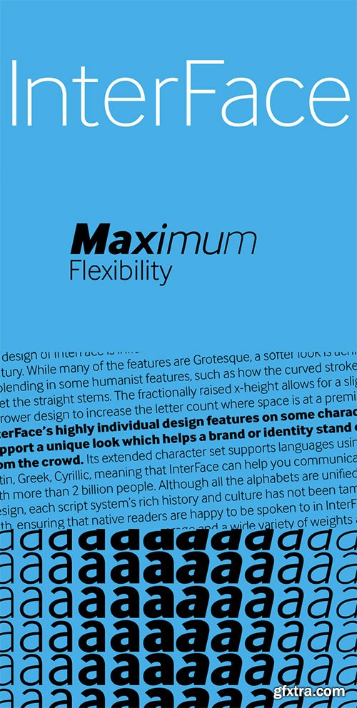 InterFace Font Family - 12 Font $972