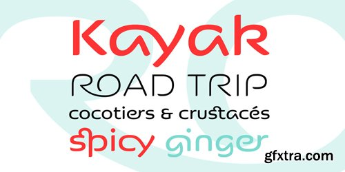 Kaili FY Font Family - 2 Fonts for $75