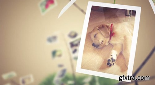 Videohive Picture Tree Photo Gallery 6272860