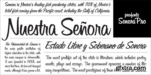 Sonora Pro Font Family - 6 Fonts $294