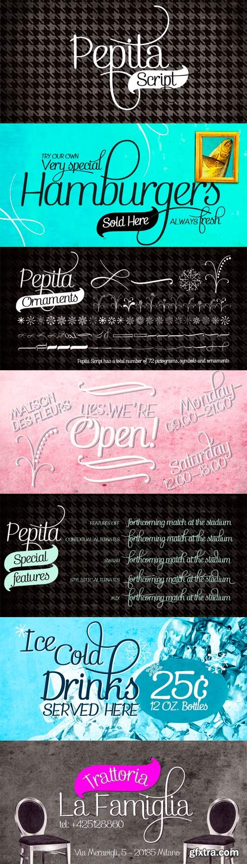 Pepita Script Font Family - 6 Fonts for $60