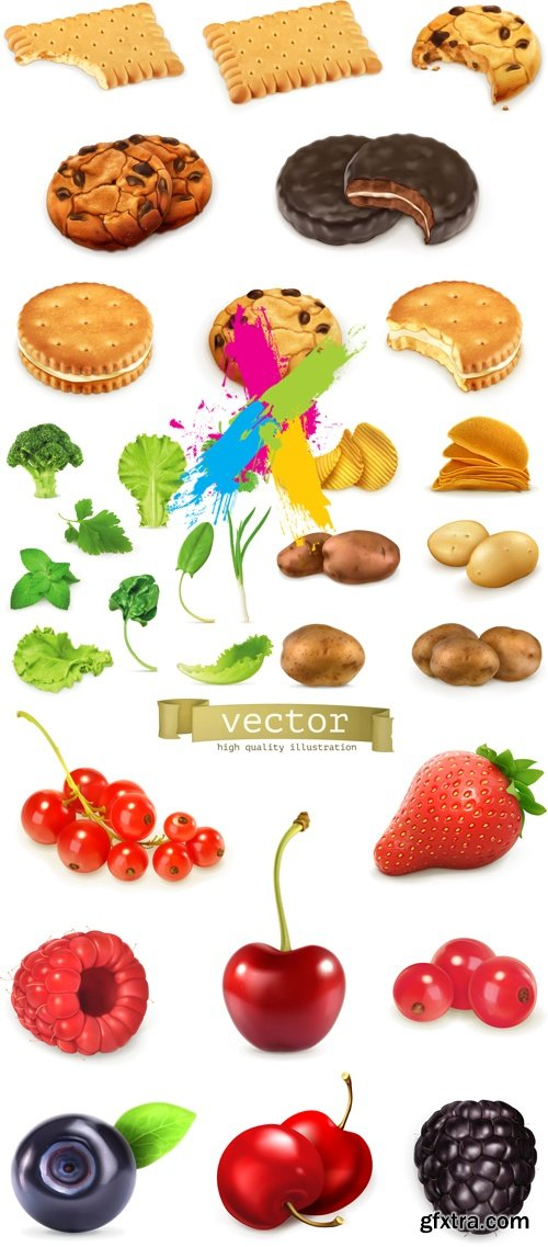 Realistic Food, Products Vector