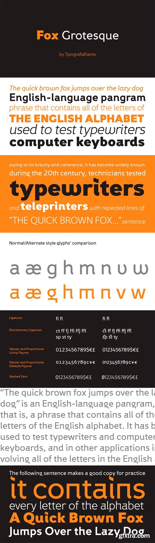 Fox Grotesque Font Family - 12 Fonts for $200