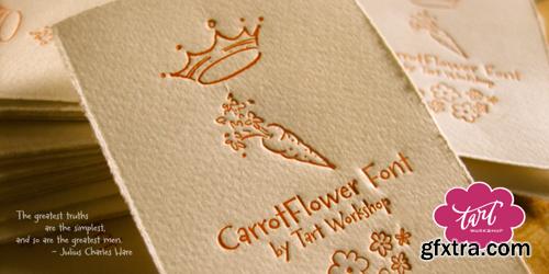 Carrotflower Font Family - 4 Fonts for $30