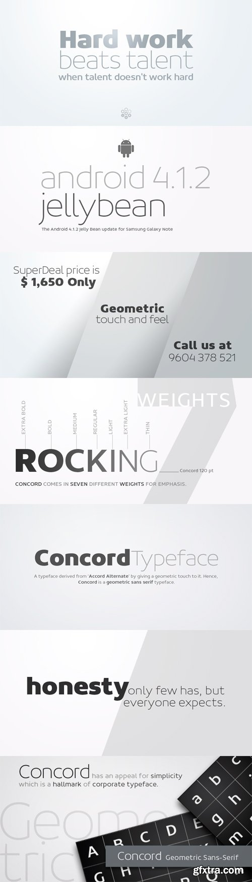 Concord Font Family - 7 Fonts for $525