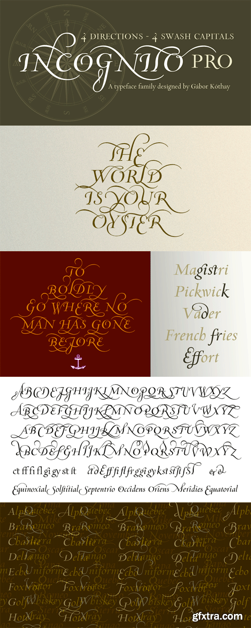 Incognito Pro Font Family - 3 Fonts for $250