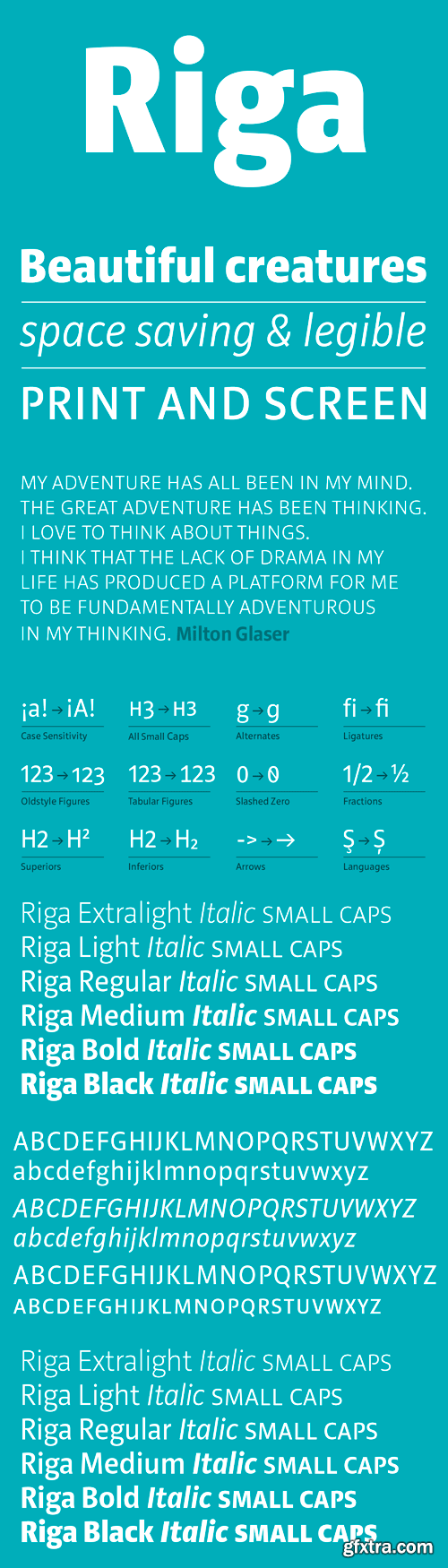 Riga Font Family - 18 Fonts for $449